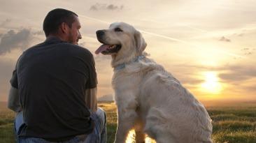 man dogs best friend